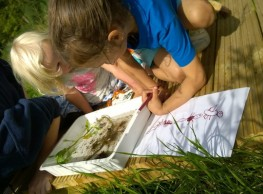 Pond Dipping 2_(540x400)